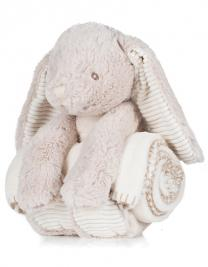 Rabbit and Blanket